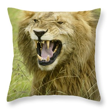 Tough Guy Throw Pillow by Michele Burgess