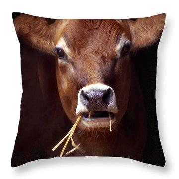 Toupee Throw Pillow