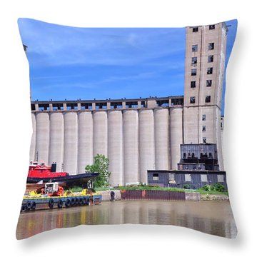 Tour Down Buffalo River Throw Pillow by Kathleen Struckle