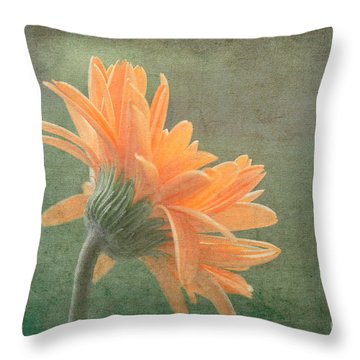 Toward The Light Throw Pillow