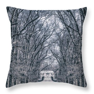 Towards The Lonely Path Of Winter Throw Pillow