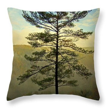 Throw Pillow featuring the photograph Towering Pine by Suzanne Stout