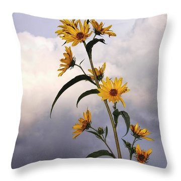 Throw Pillow featuring the photograph Towering Sunflowers by Rob Graham
