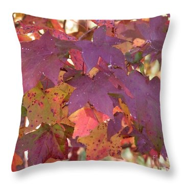 Throw Pillow featuring the photograph Traces Of Fall by Andrea Anderegg
