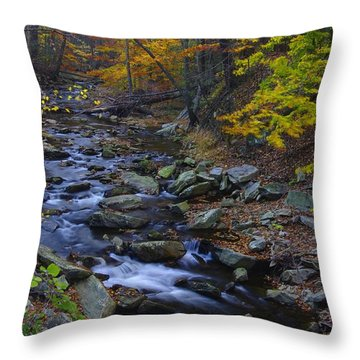 Tracking Color - Big Hunting Creek Catoctin Mountain Park Maryland Autumn Afternoon Throw Pillow