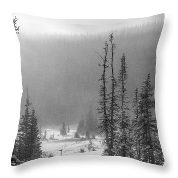 Tracks In Snow Throw Pillow