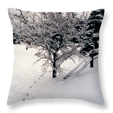 Tracks Throw Pillow by Skip Willits