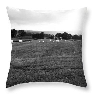 Tractor Eggs Throw Pillow by Randi Grace Nilsberg