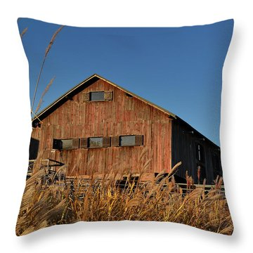 Traders Point Barn Throw Pillow