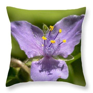 Tradescantia Virginiana Throw Pillow