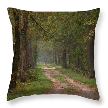 Trail Along The Canal Throw Pillow