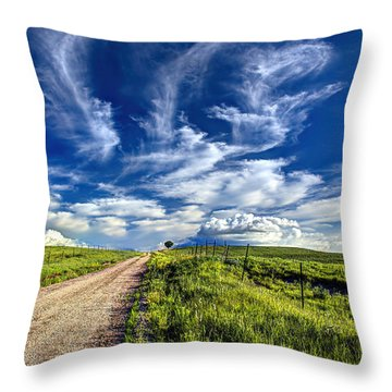 Trail Drive Road Throw Pillow by Jean Hutchison