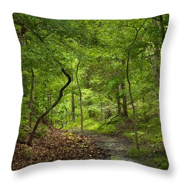 Trail Of Tears Mantle Rock Entrance Throw Pillow by Lena Wilhite