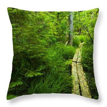 Trail Through The Woods Throw Pillow