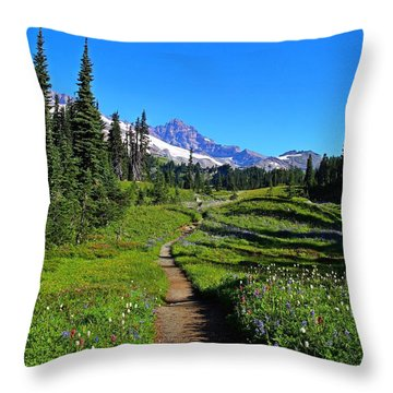 Trail To Mazama Ridge Throw Pillow