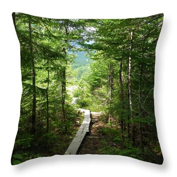 Trail To Sandy Stream Pond Throw Pillow