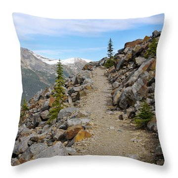 Trail To The Meadows Throw Pillow