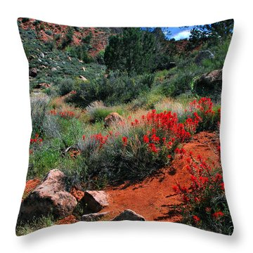 Throw Pillow featuring the photograph Trail To The Watchman by Barbara Manis