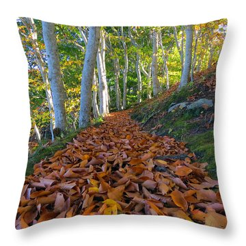 Trailblazing Throw Pillow by Dianne Cowen