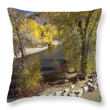 Trailing Of The Shep Throw Pillow