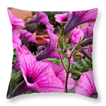 Throw Pillow featuring the photograph Trailing Petunias by Clare Bevan