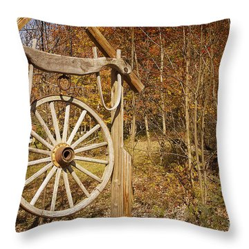 Trail's End Throw Pillow by A New Focus Photography