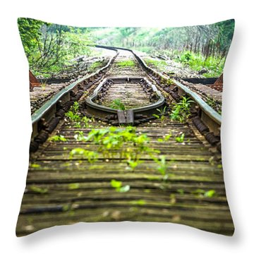 Train Trestle 2 Throw Pillow