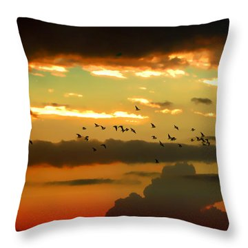 Throw Pillow featuring the photograph Sunset 1 by Ze  Di