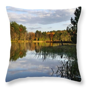 Tranquil Autumn Landscape Throw Pillow by Christina Rollo