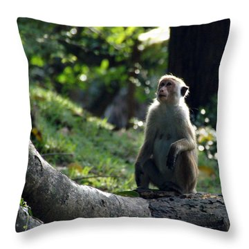 Waiting Throw Pillow by Debi Demetrion