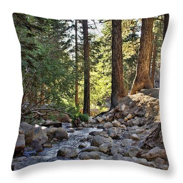 Tranquil Forest Throw Pillow by Peggy Hughes