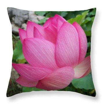 Tranquil Lotus  Throw Pillow by Lingfai Leung