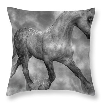 Tranquil Mystic Throw Pillow