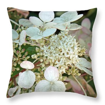 Tranquil Pastels Throw Pillow