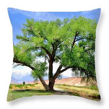 Throw Pillow featuring the photograph Tranquil Scene by Marilyn Diaz