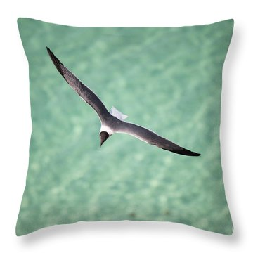 Tranquil Soaring Throw Pillow