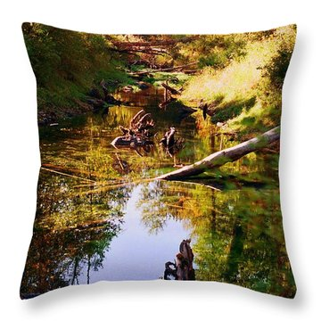 Throw Pillow featuring the photograph Tranquil Space by Kathy Bassett