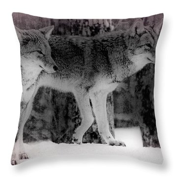 Throw Pillow featuring the photograph Tranquility by Bianca Nadeau