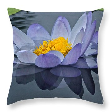 Tranquility Throw Pillow by Byron Varvarigos