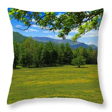 Throw Pillow featuring the photograph Tranquility by Geraldine DeBoer