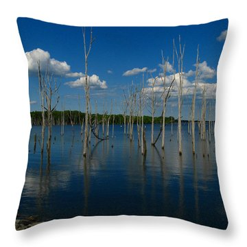Throw Pillow featuring the photograph Tranquility II by Raymond Salani III