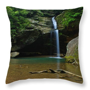 Tranquility Throw Pillow by Julie Andel