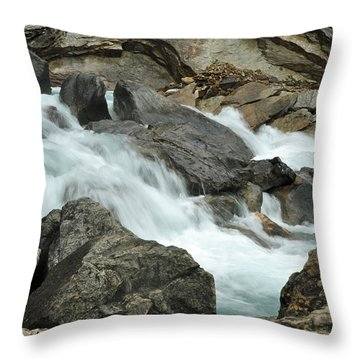 Throw Pillow featuring the photograph Tranquility by Lisa Phillips