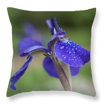Throw Pillow featuring the photograph Tranquility by Miguel Winterpacht