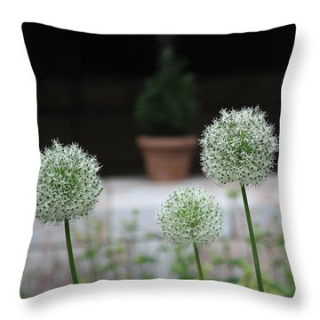 Tranquility Throw Pillow by Yvonne Wright