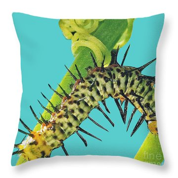 Transformation Takes Time Throw Pillow
