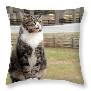 Traveler Posted Throw Pillow