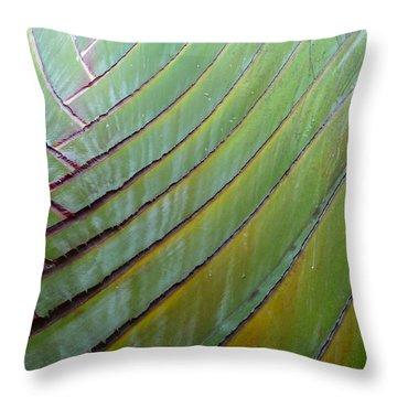 Traveler's Palm Design Throw Pillow