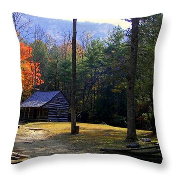 Traveling Back In Time Throw Pillow by Karen Wiles