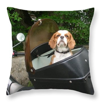 Traveling Dog Throw Pillow